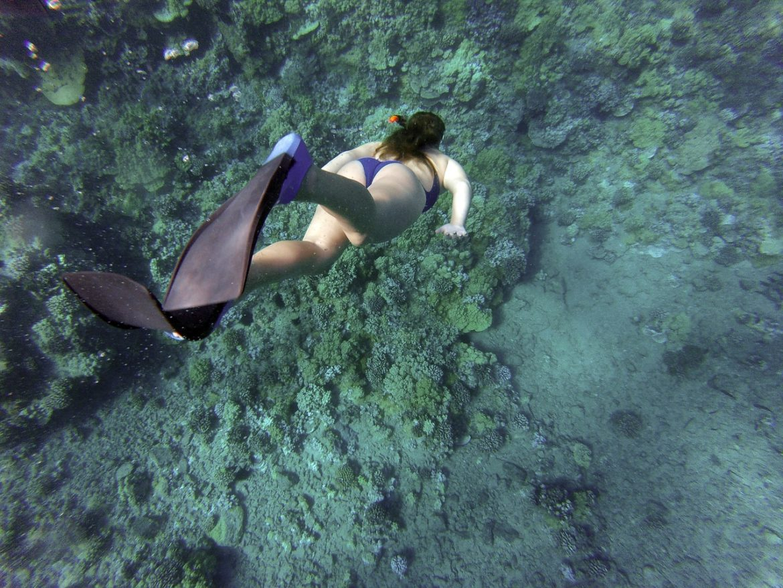 Dykker dykker ned med svømmefødder